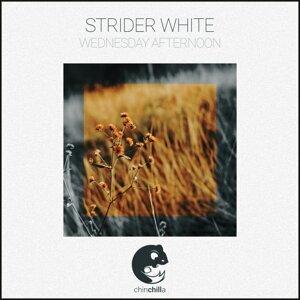 Strider White 歌手頭像