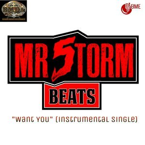 Mr5torm Beatz 歌手頭像