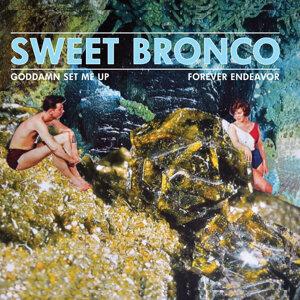 Sweet Bronco 歌手頭像