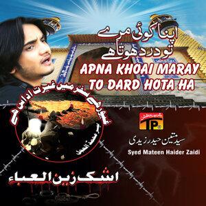 Syed Mateen Haider Zaidi 歌手頭像