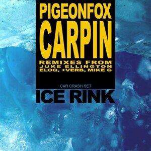Pigeonfox