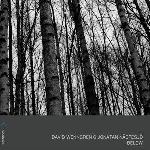 David Wenngren & Jonatan Nästesjö 歌手頭像