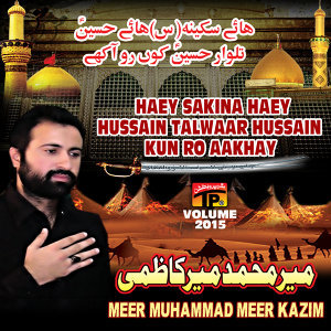 Meer Muhammad Meer Kazmi 歌手頭像