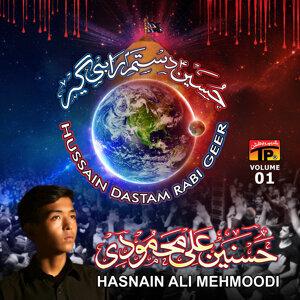 Hasnain Ali Mehmoodi 歌手頭像