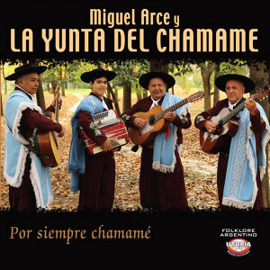 Miguel Arce y La Yunta del Chamamé 歌手頭像