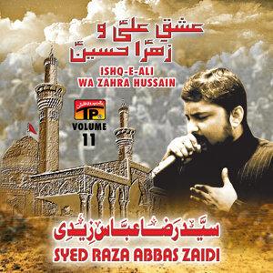 Syed Raza Abbas Zaidi 歌手頭像