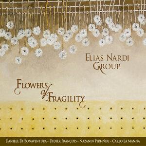 Elias Nardi Group 歌手頭像
