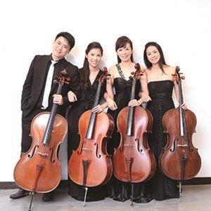 Cello4 歌手頭像