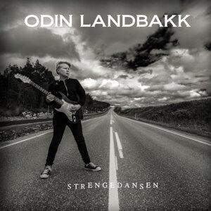 Odin Landbakk 歌手頭像