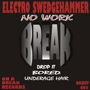 Electro Swedgehammer 歌手頭像