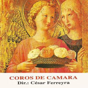 Coro de Cámara de Córdoba 歌手頭像
