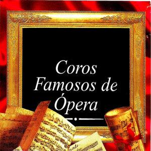 Orchestra del Teatro dell'Opera Italiana 歌手頭像