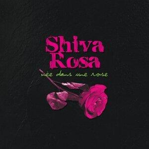 Shiva Rosa 歌手頭像