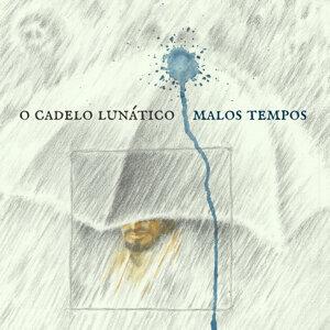 O Cadelo Lunático 歌手頭像
