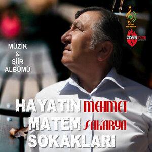 Mehmet Sakarya 歌手頭像