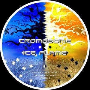 Cromosome 歌手頭像