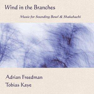Adrian Freedman, Tobias Kaye 歌手頭像