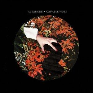 Altadore