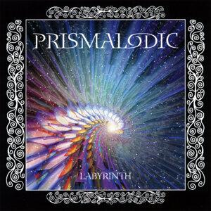 Prismalodic 歌手頭像