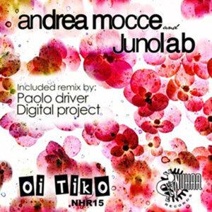 Andrea Mocce, Junolab 歌手頭像