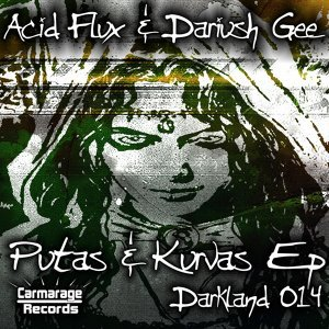 Acid Flux & Dariush Gee 歌手頭像