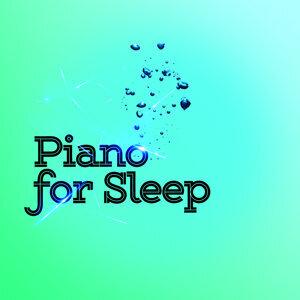 Piano Sleep 歌手頭像