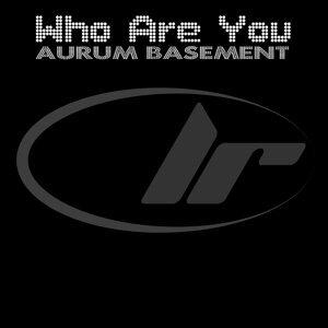 Aurum Basement 歌手頭像