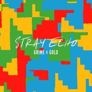 Stray Echo 歌手頭像