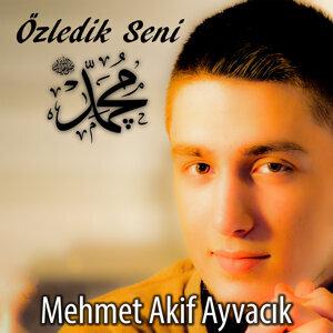 Mehmet Akif Ayvacik 歌手頭像