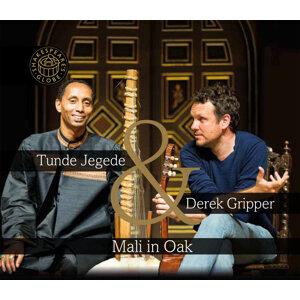 Derek Gripper