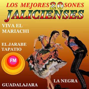 Mariachi De Zapopan De Armando López 歌手頭像
