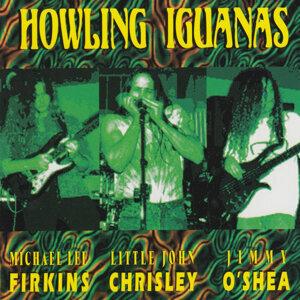 Howling Iguanas 歌手頭像