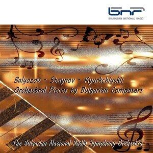The Bulgarian National Radio Symphony Orchestra 歌手頭像