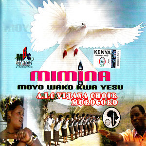 AIC Vijana Choir Morogoro 歌手頭像