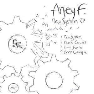 Aney F.