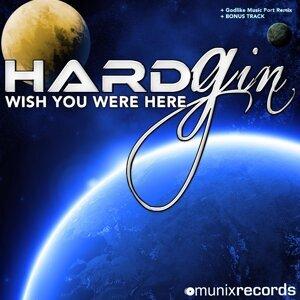 Hard Gin 歌手頭像
