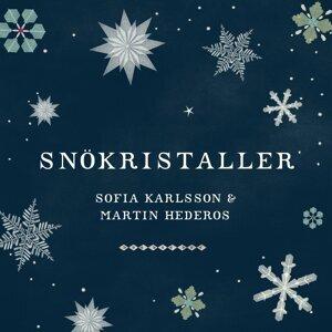 Sofia Karlsson & Martin Hederos 歌手頭像