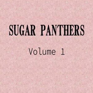 Sugar Panthers 歌手頭像