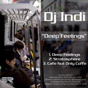 DJ INDI 歌手頭像
