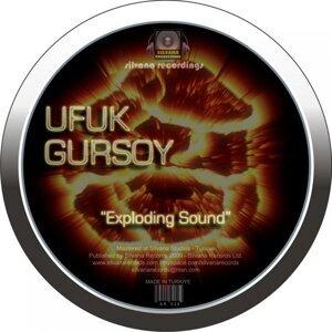 Ufuk Gursoy 歌手頭像