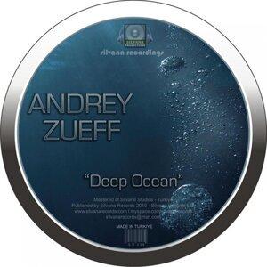 Andrey Zueff 歌手頭像