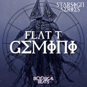 Flat T