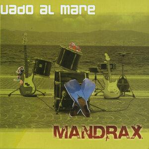 Mandrax 歌手頭像