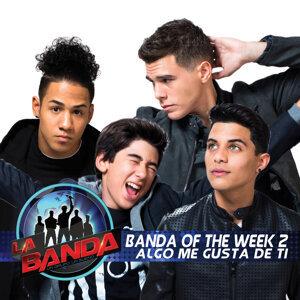 Banda of the Week 2 歌手頭像
