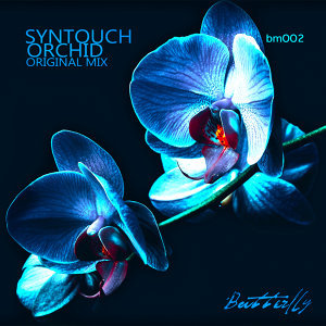 Syntouch 歌手頭像