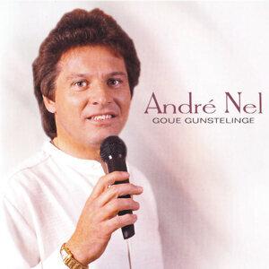 Andre Nel 歌手頭像
