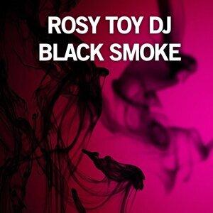 Rosy Toy DJ 歌手頭像