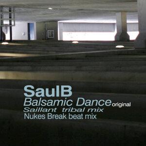 SaulB 歌手頭像