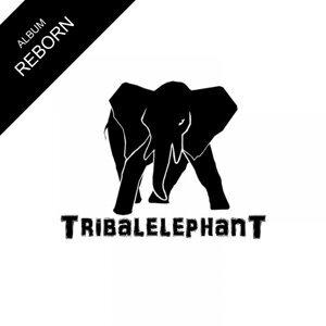 TribalelephanT 歌手頭像