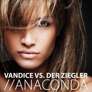 Vandice Vs. Der Ziegler 歌手頭像